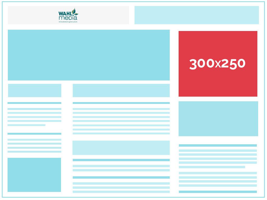 ads 300x250 wahl - Digital Media- Audience Targeting
